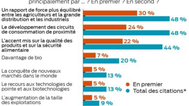 "Photo of Sondage : La moitié des agriculteurs ""optimistes"""