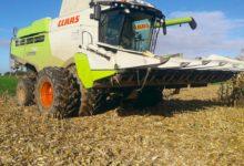 Photo of Ne pas abîmer les sols lors des récoltes du maïs