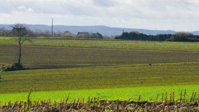 Photo of PAC : Les mesures environnementales au cœur des préoccupations
