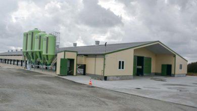 Photo of Des aides de la Région pour moderniser les poulaillers
