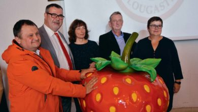 Photo of La fraise de Plougastel veut son IGP