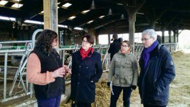 Photo of Ille-et-Vilaine : Le Département aide les agricultrices