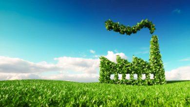 Photo of Vers des marchés locaux de carbone