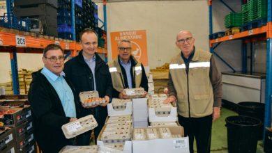 Photo of Les producteurs donnent 100000 œufs aux banques alimentaires