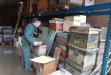 Photo of Pendant l'hivernage des ruches, que font les apiculteurs ?