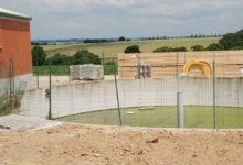 Photo of Les élevages de porcs doivent se préparer pour 2021