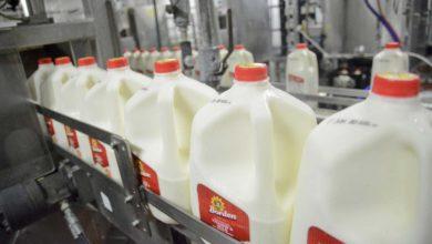 Photo of L'industrie laitière américaine dans la tourmente