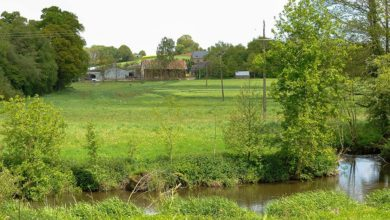 Photo of La liste des cours d'eau à protéger s'allonge