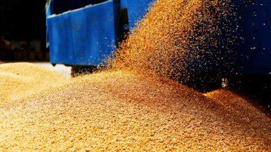 Photo of Sofiprotéol et Arkéa accompagnent l'émergence d'un groupe de négoce agricole