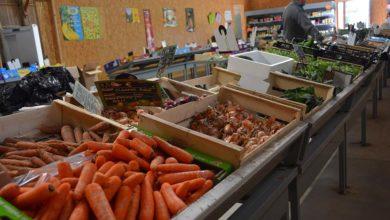 Photo of Légume : Des inquiétudes avant les récoltes