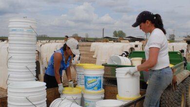Photo of Les USA jettent du lait