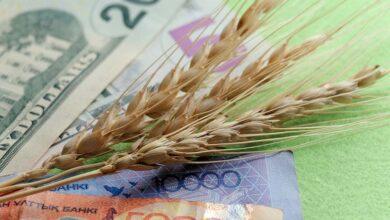 Photo of Le faux débat sur le blé