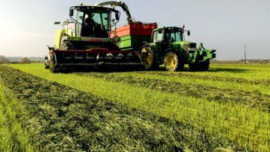 Photo of Ensilage d'herbe : Des solutions pour améliorer la conservation