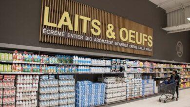 Photo of Marché laitier : « Fiers de n'avoir laissé aucun litre de lait de côté »