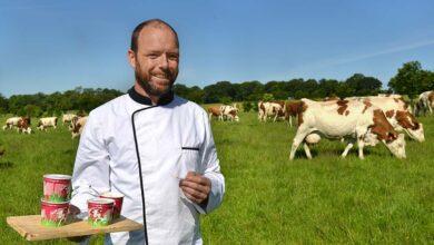Photo of Les bonnes recettes du P'tit pot de vache
