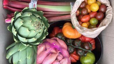 Photo of Les légumes sont dans la place