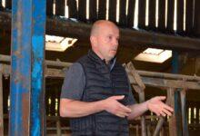 Photo of Bovin viande : Des circuits courts diversifiés