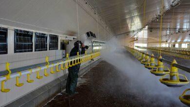 Photo of Le lavage et la désinfection confiés à une entreprise spécialisée