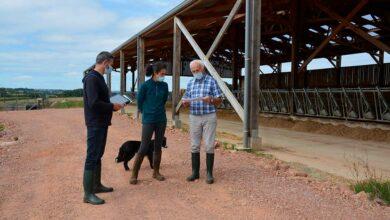 Photo of Un audit pour améliorer la biosécurité en bovin