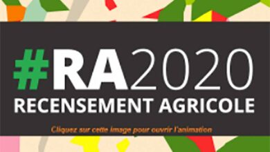 Photo of Top départ du recensement agricole