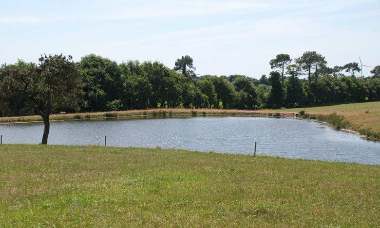 Photo of Les retenues d'eau, pas assez nombreuses