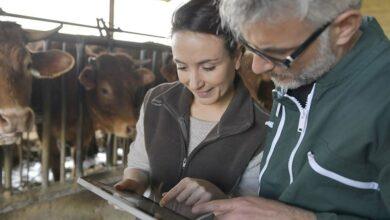 Photo of Combien gagne un agriculteur par heure travaillée ?