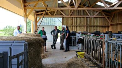 Photo of Un bâtiment en kit pour la santé des veaux