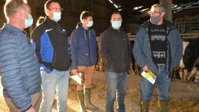 Photo of L'EARL de Lann Pell lutte contre les mycotoxines