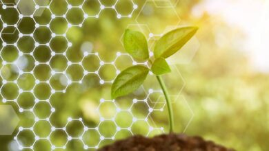 Photo of Biocontrôle : Une stratégie nationale pour «lever les freins»