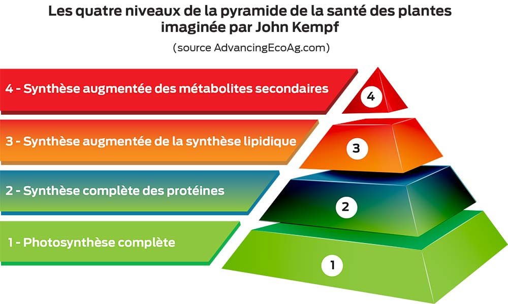 schema ed22 pyramide
