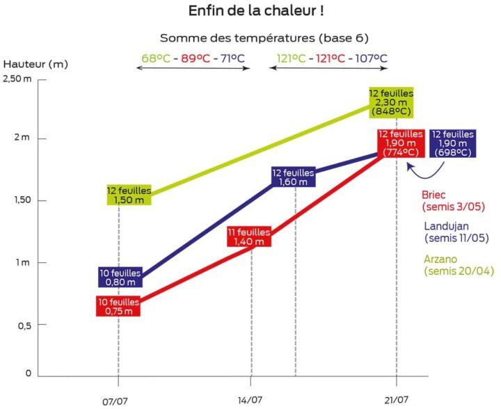 graph m 230721